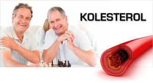 obat herbal kolesterol jelly gamat gold g